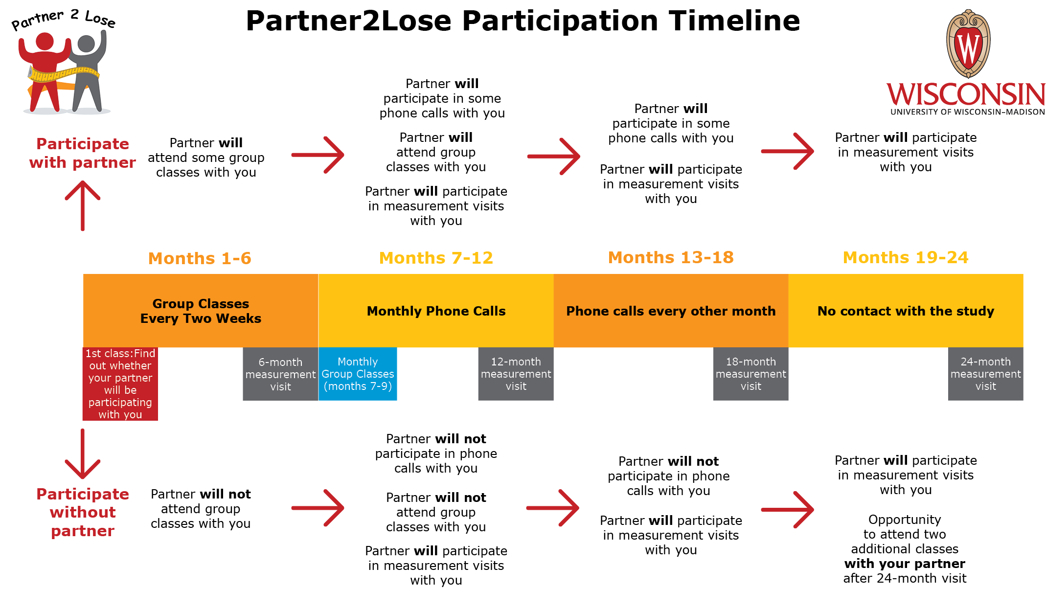 Partner2Lose Participation Timeline